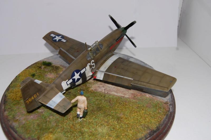 P-51 B Tamiya monture du Lt Wilson K.Beker 359 Th FG Dsc_3234