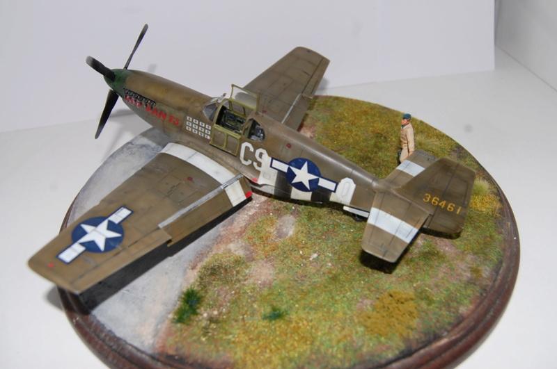 P-51 B Tamiya monture du Lt Wilson K.Beker 359 Th FG Dsc_3235