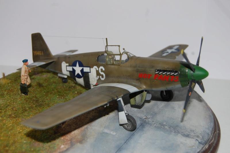 P-51 B Tamiya monture du Lt Wilson K.Beker 359 Th FG Dsc_3236