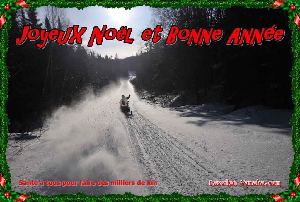Joyeux Noël et Bonne Année! Dsc_3110