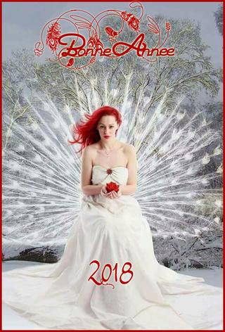 bonne année  Olo_vo10