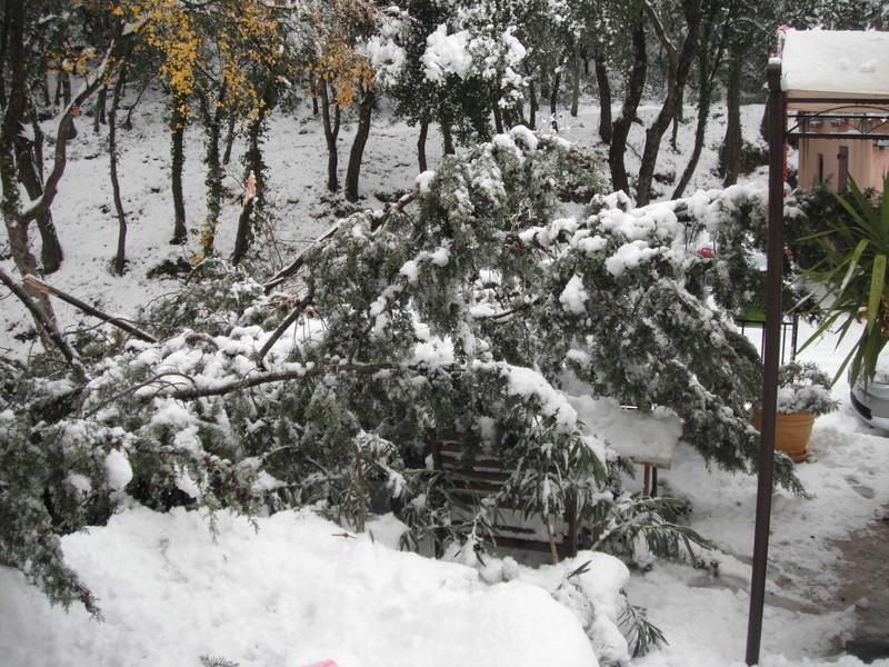 qui est sous la neige  Dscf8017