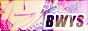 Logos de nos partenaires Bwys110