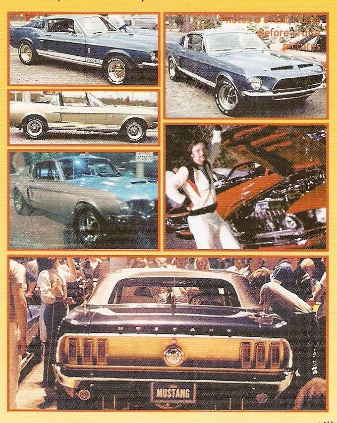 Montréal Mustang dans le temps! 1981 à aujourd'hui (Histoire en photos) 1981-m11
