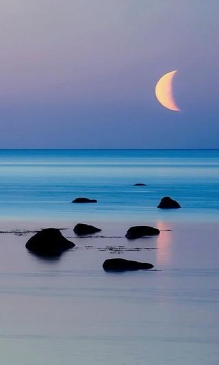 bonzour bonne zournée et bonne nuit notre ti nid za nous - Page 37 55a53812