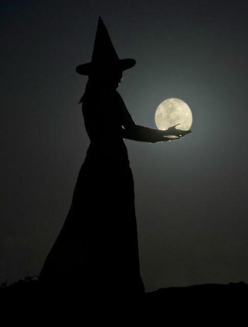 bonzour bonne zournée et bonne nuit notre ti nid za nous - Page 39 B86b0410