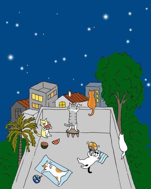 bonzour bonne zournée et bonne nuit notre ti nid za nous - Page 37 D31a0510