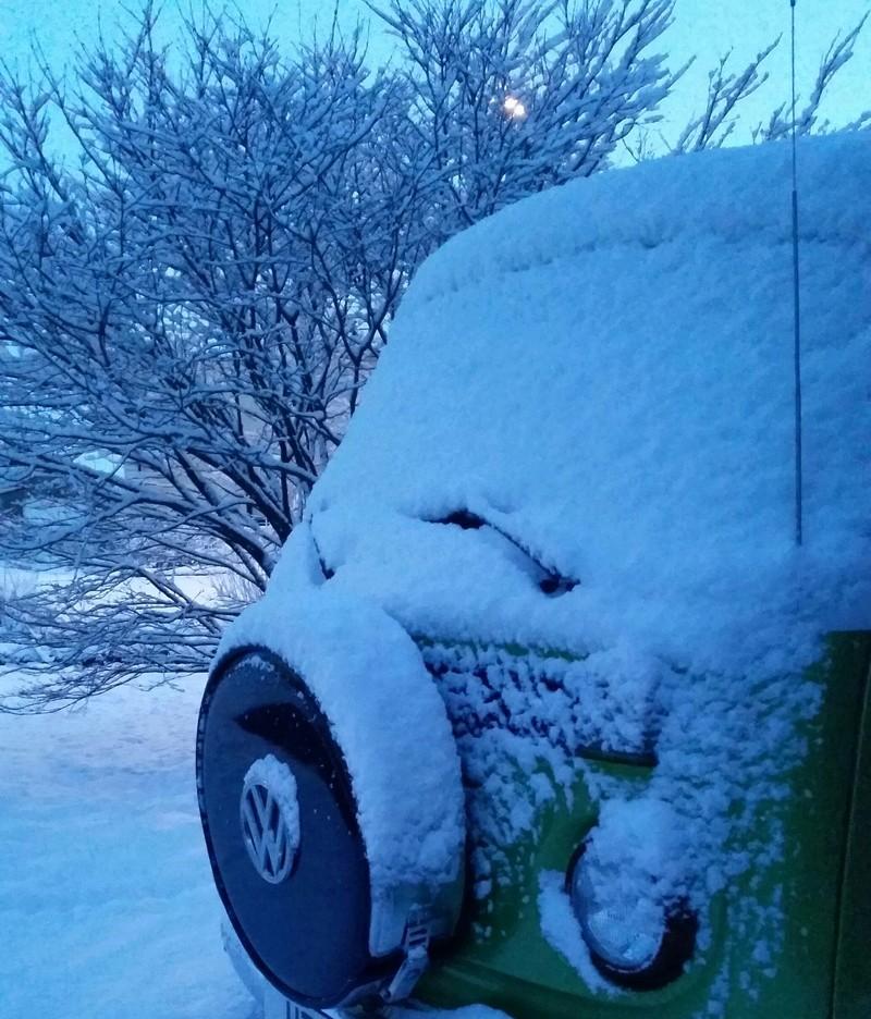 Snow Pics 20150110