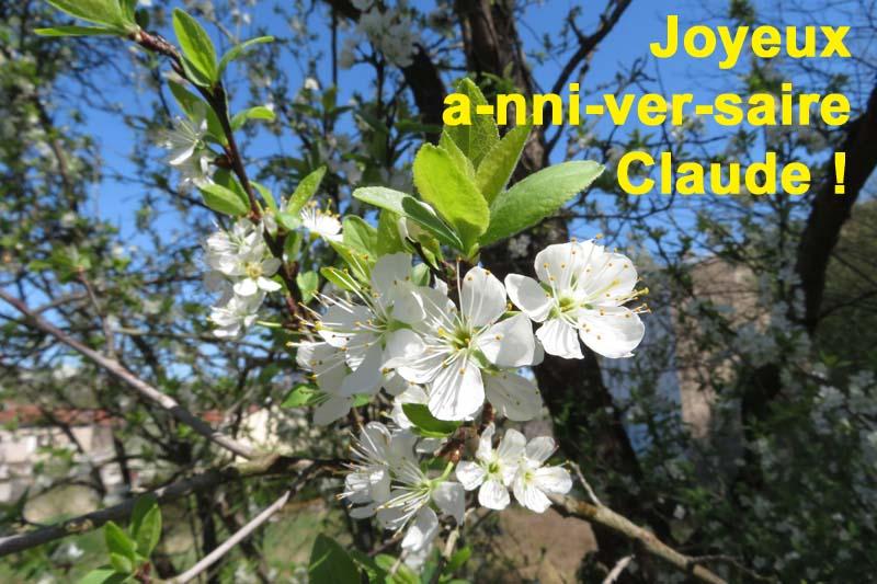 Pour notre ostréiculteur préféré !!! Fleur_10