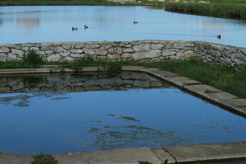 Des lavoirs, fontaines, bassins... Lavoir11