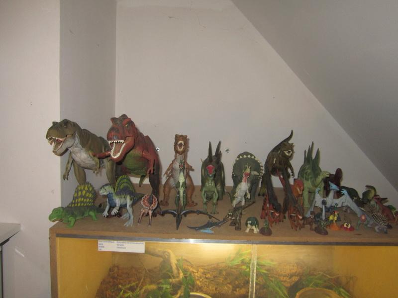 La collection de questar50 Img_8419