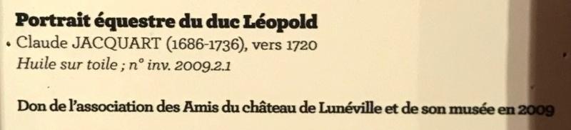 Lunéville : 10 ans d'acquisitions révélées Img_6221