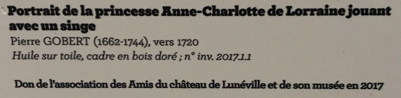 Lunéville : 10 ans d'acquisitions révélées Img_6321