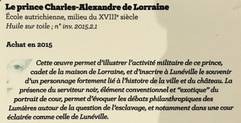 Lunéville : 10 ans d'acquisitions révélées Img_6334