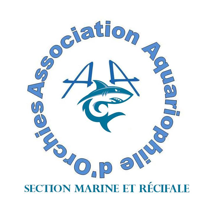 Association aquariophile d'Orchies Logo_s10