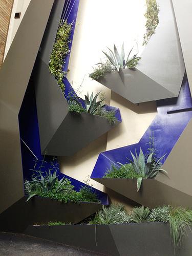 Agave - mur vegetal 1abei10