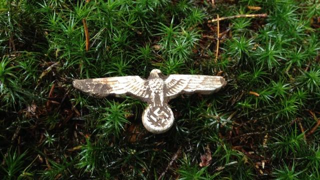 aigle de poitrine Maxres10