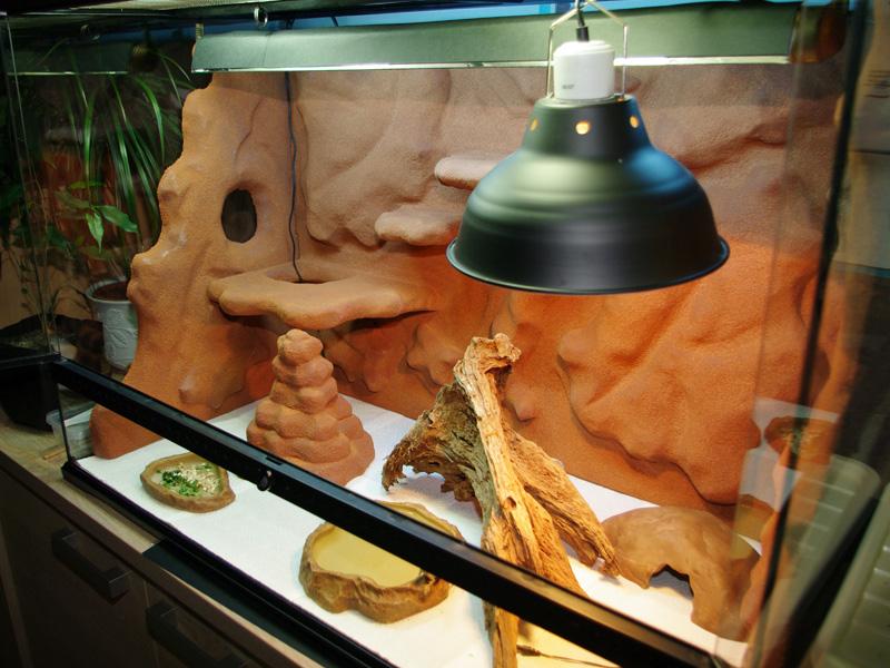 Fabrication d'un nouveau decor pour terrarium exoterra - Page 2 K20d5419