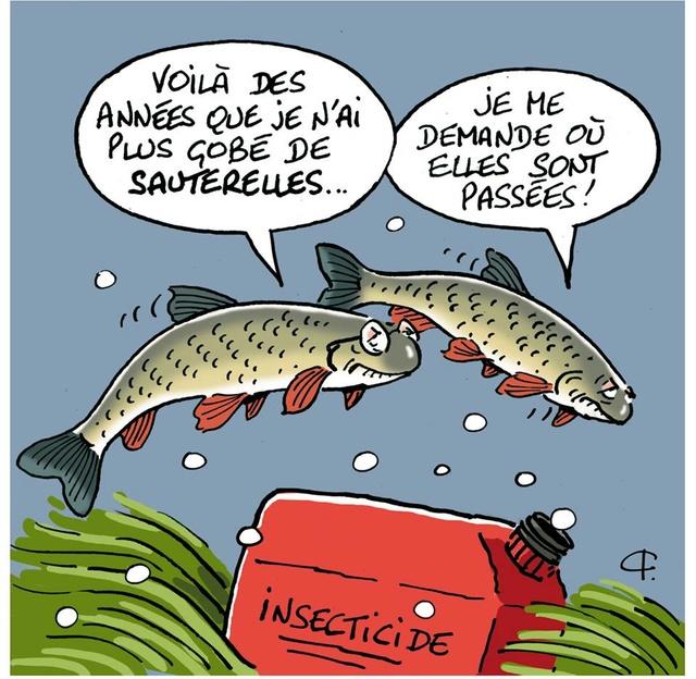 La vandoise.com - Page 15 29513010