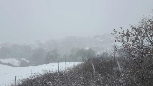 De la neige  Img_2011