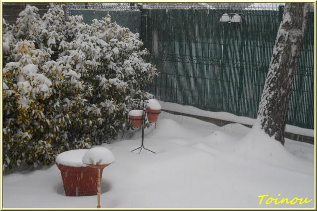 De la neige  - Page 2 Sam_6423