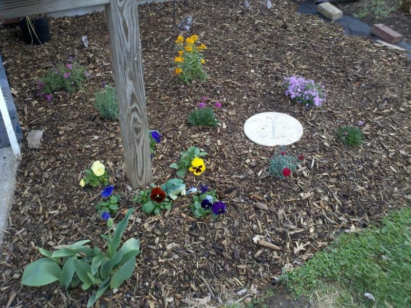 Shannon's Gardening Thread [2011-2013] 2011-013