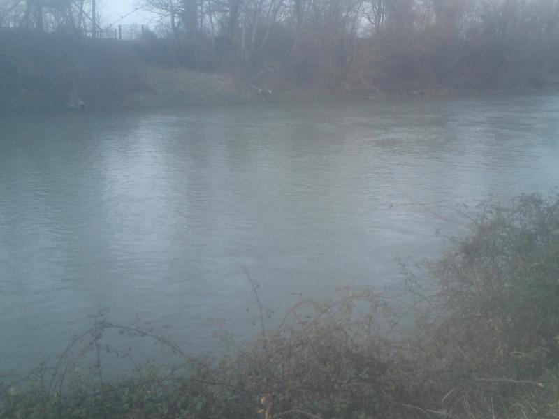 """petit fleuve calme """"l'adour"""" Dsc00216"""