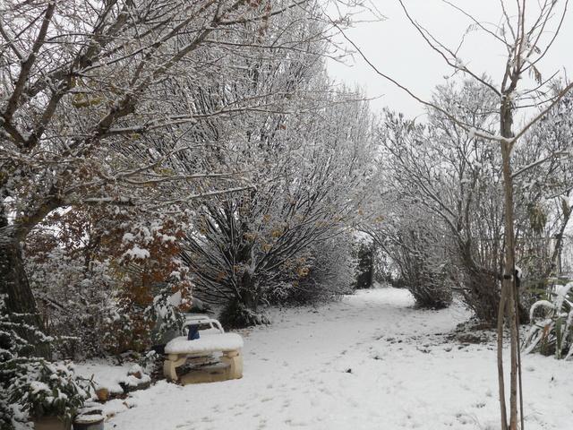 Let It Snow ... Dscn0111