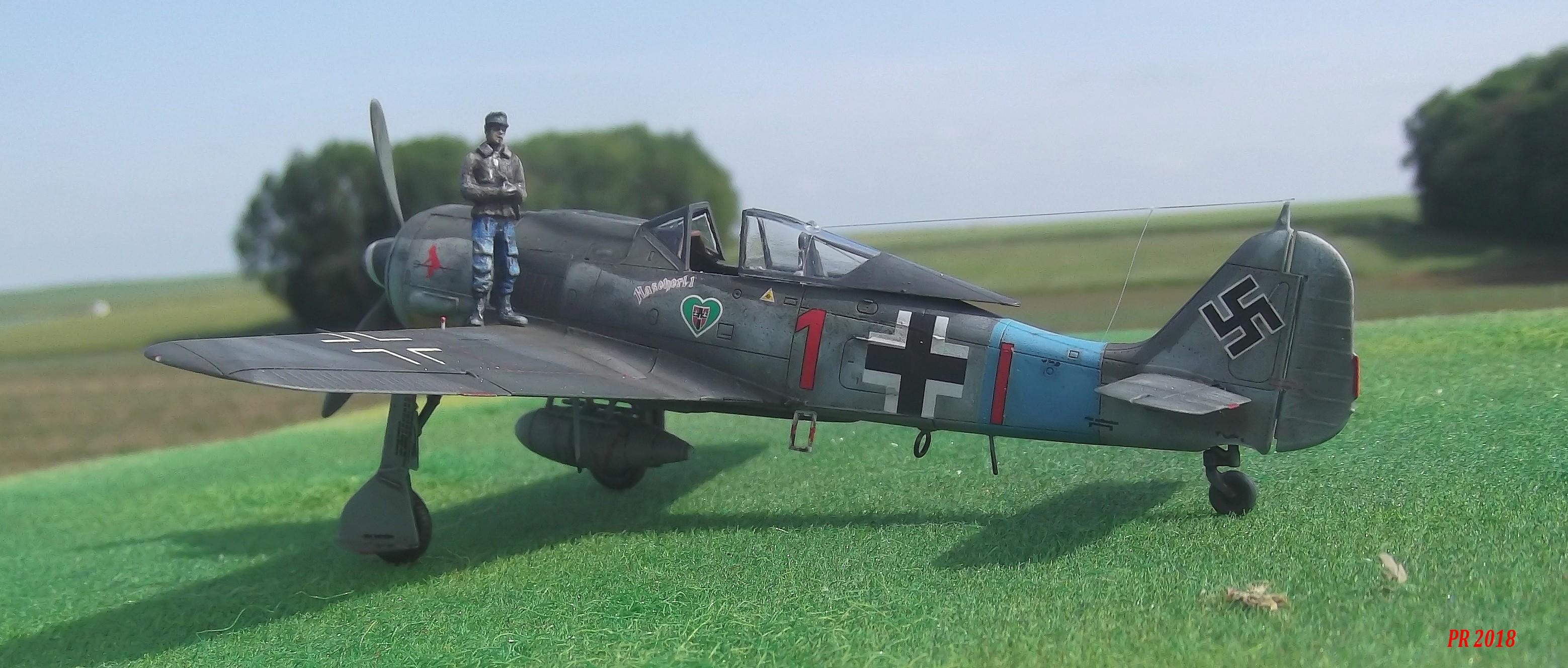 FW190 A8 maquette Eduard 1/72 Ab0110