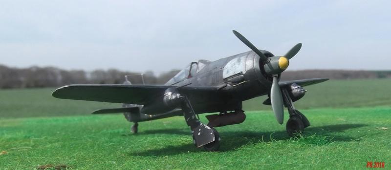 Fw 190 A4 u8 de Zvezda  U8_00310