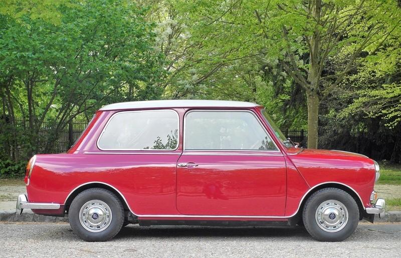 Rover Cooper 91 et Leyland 1100 77 et Riley Elf 67 - Page 8 Sam_3314