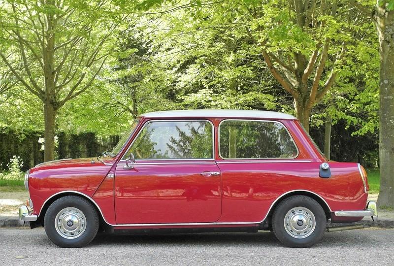 Rover Cooper 91 et Leyland 1100 77 et Riley Elf 67 - Page 8 Sam_3318