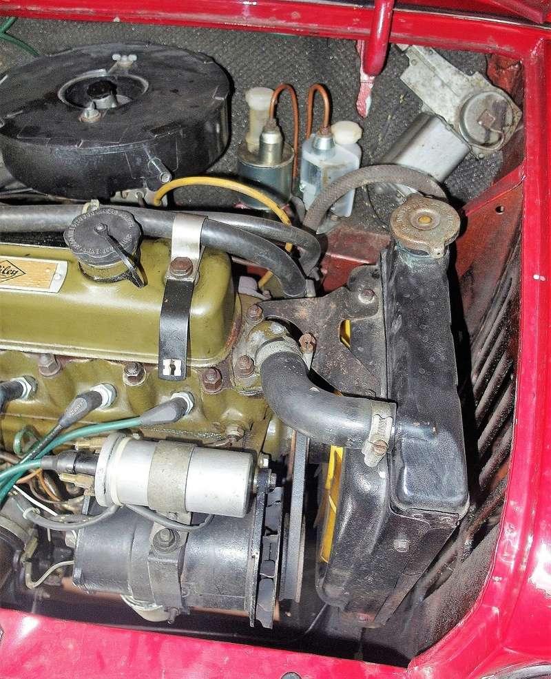 Rover Cooper 91 et Leyland 1100 77 et Riley Elf 67 - Page 8 Sam_3426