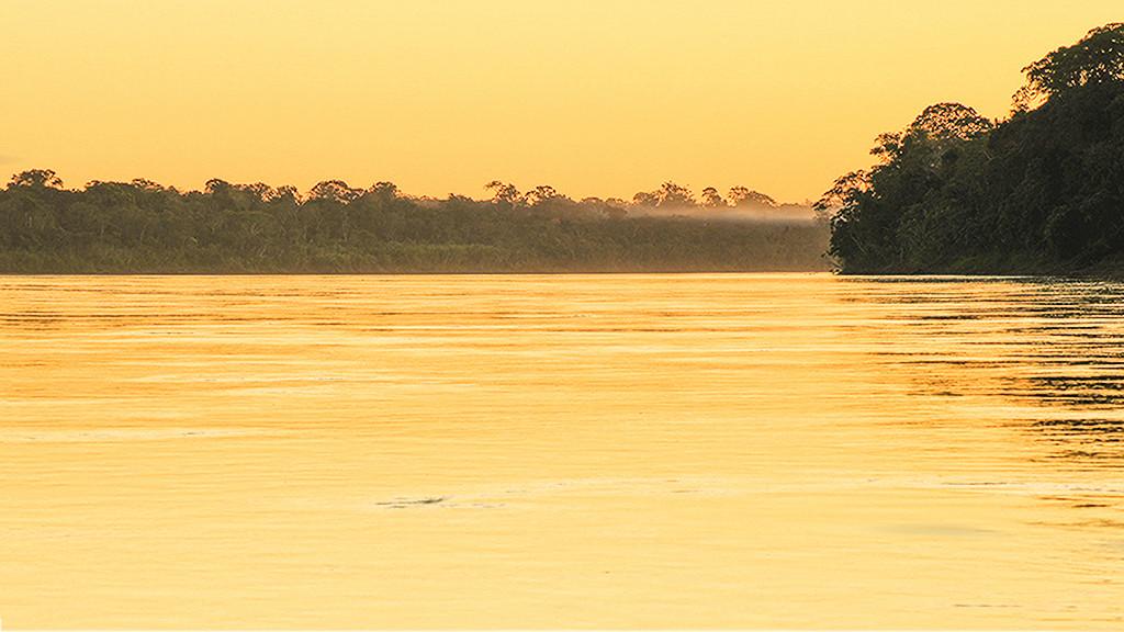 Crepúsculo amazónico  Dsc02913