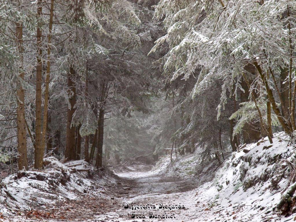 premières neiges Pb099610