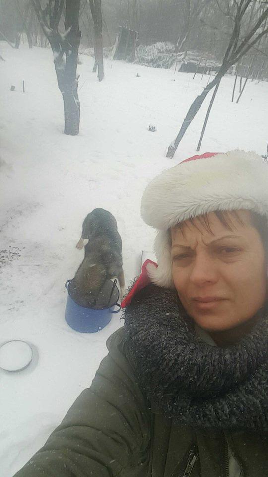 Refuge de Camélia - à proximité de Bucarest Cameli11