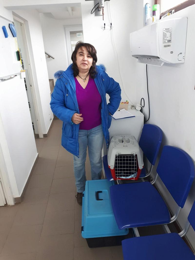 Campagne de stérilisation pour les propriétaires particuliers de Pascani Campag12