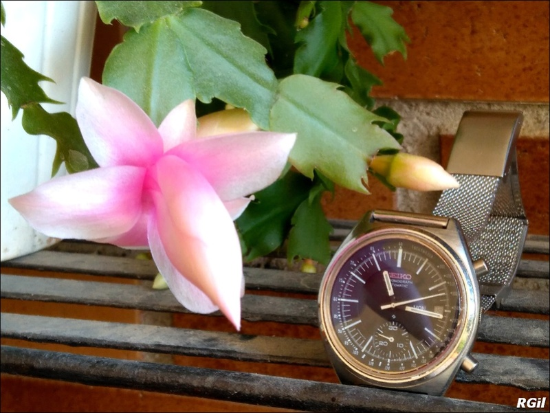 Votre montre du jour - Page 4 Fleur10