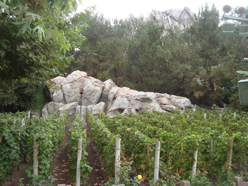 [Disneyland Resort] 17 au 19 octobre 2010 + l'Ouest américain Dsc09015