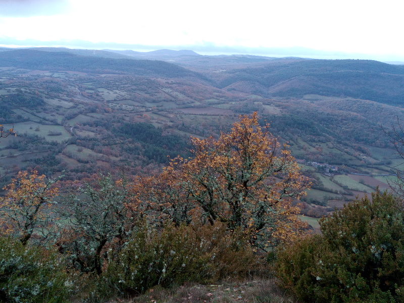 12-30-48 Aveyron-Gard-Lozère saison 2017/2018 - Page 5 Img_2026