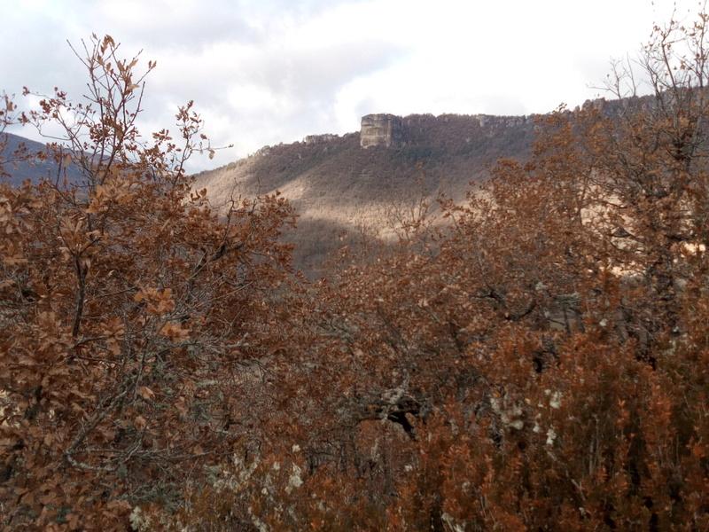 12-30-48 Aveyron-Gard-Lozère saison 2017/2018 - Page 5 Img_2034