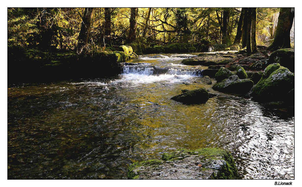 la rivière Hérisson Heriss10