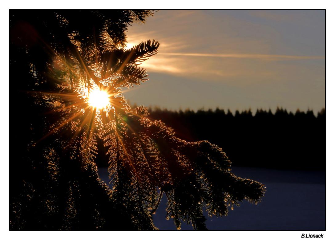 Le soleil se lève devant la maison Leverc10