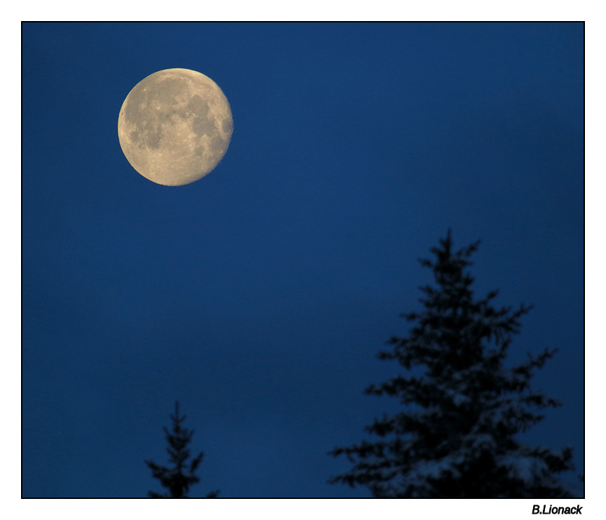 Ce matin à ma fenêtre Moon10