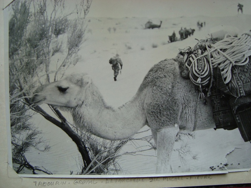 Photos souvenir  de l'Algérie en guerre 55/58 - Page 2 Dsc00105