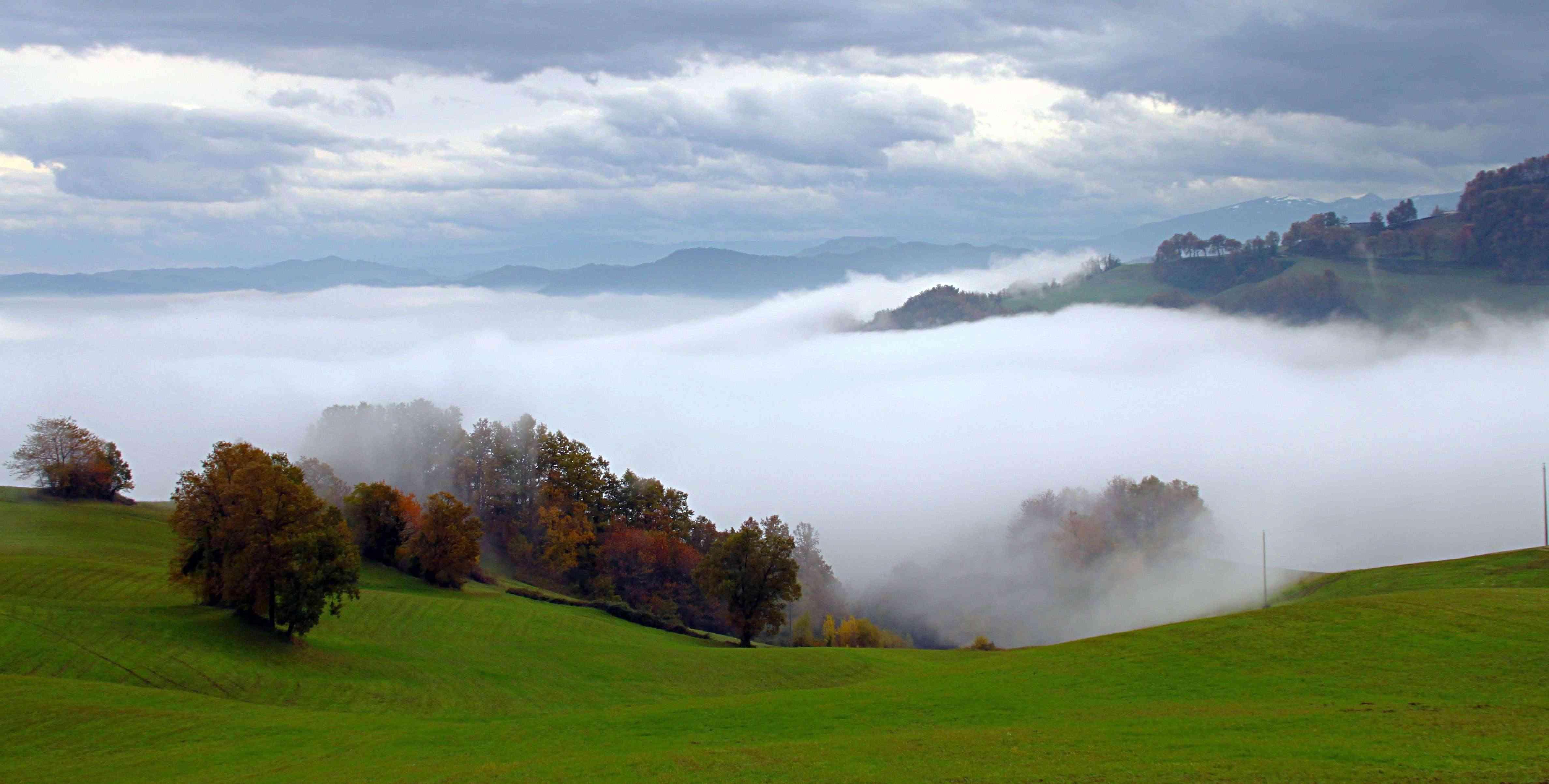 La nebbia piovigginando sale Img_8710