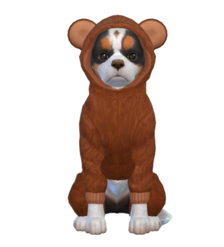 Les Sims 4 Chiens et Chats - 10 Novembre 2017 - Page 2 Simsca12