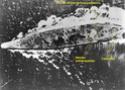 IJN Yamato en détails - Page 3 Yamato12