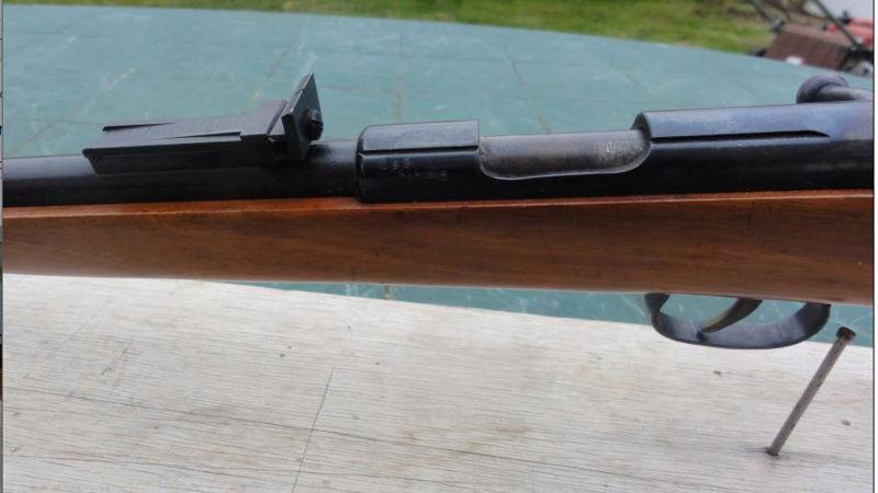 curieuse carabine  Captur10