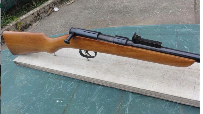 curieuse carabine  Captur11
